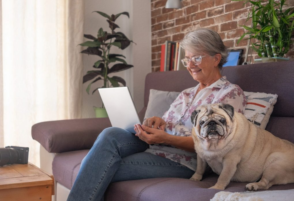 Smiling elderly woman at home working with laptop, sitting close to her old pug dog going online to get her Medicare and You Book